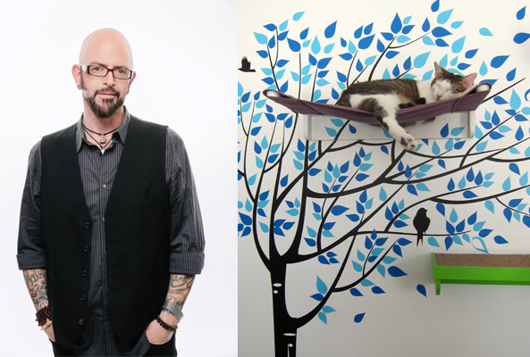 The cat on my head posts part 2 of interview with jackson for Jackson galaxy images