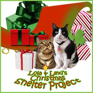 LL ChristmasShelterProject BADGE