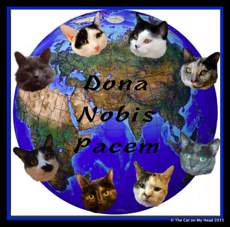 Kitties Blue join BlogBlast for Peace 2015 on Wordless Wednesday