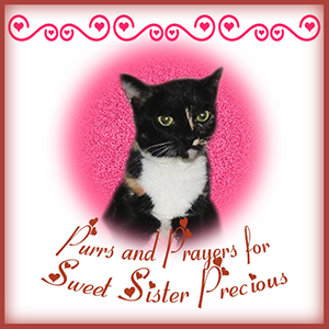 Prayers Badge for Sister Precious