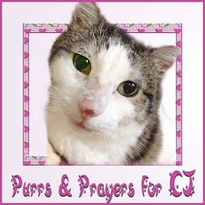 Purrs and Prayers BADGE for CJ