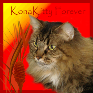 KonaKitty FOREVER