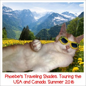 Phoebes-Traveling-Shades
