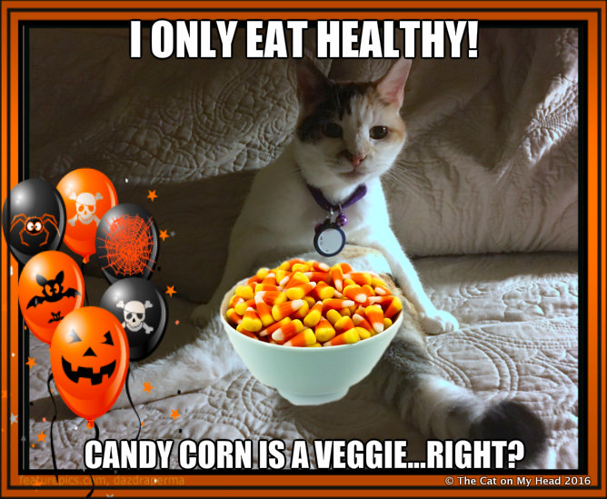 candy corn meme