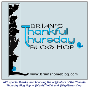 brianshome-thankfulthursday-bloghop