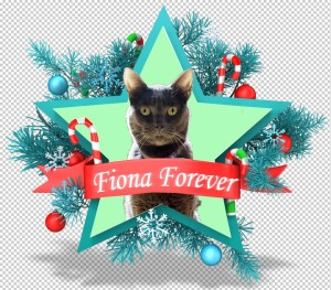 fiona_as_the_christmas_star-png
