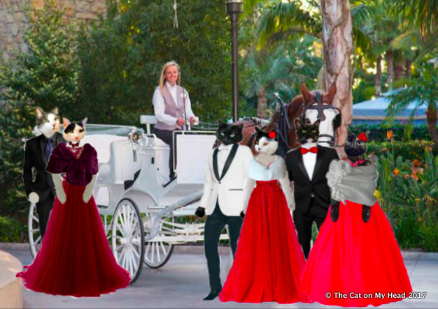 Carriage rides were available.