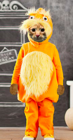Cooper Murphy as The Lorax