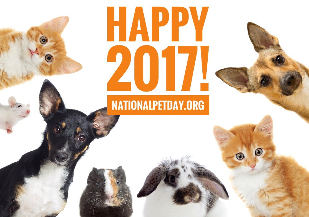 National Pet day 2017