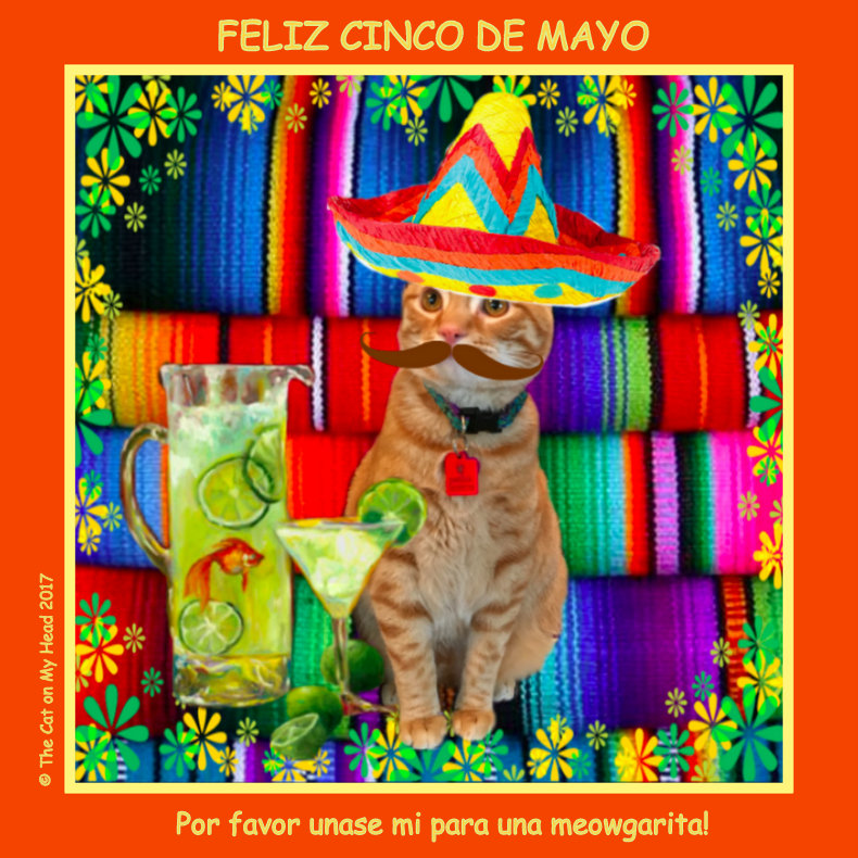 Cooper Murphy Celebrates Cinco de Mayo & completes fill-ins