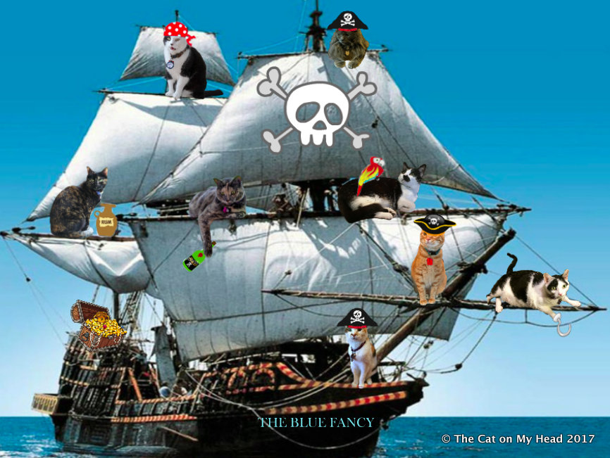 For Meowin' Like a Pirate Day, Kitties Blue have a new galleon: The Blue Fancy.