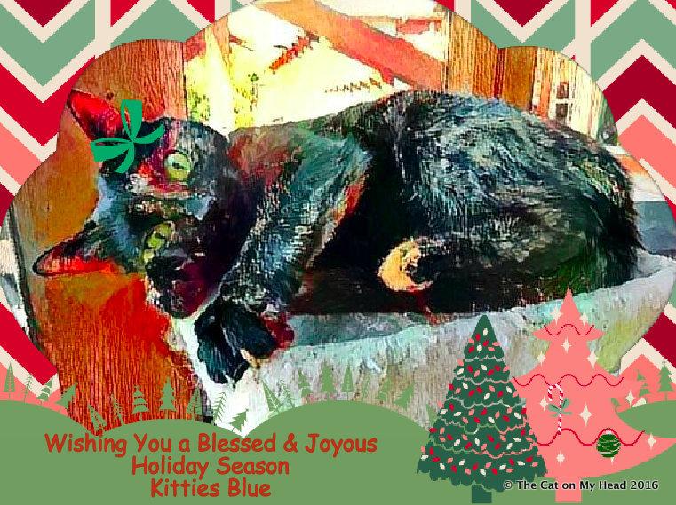 Kitties Blue 2017 Christmas card.