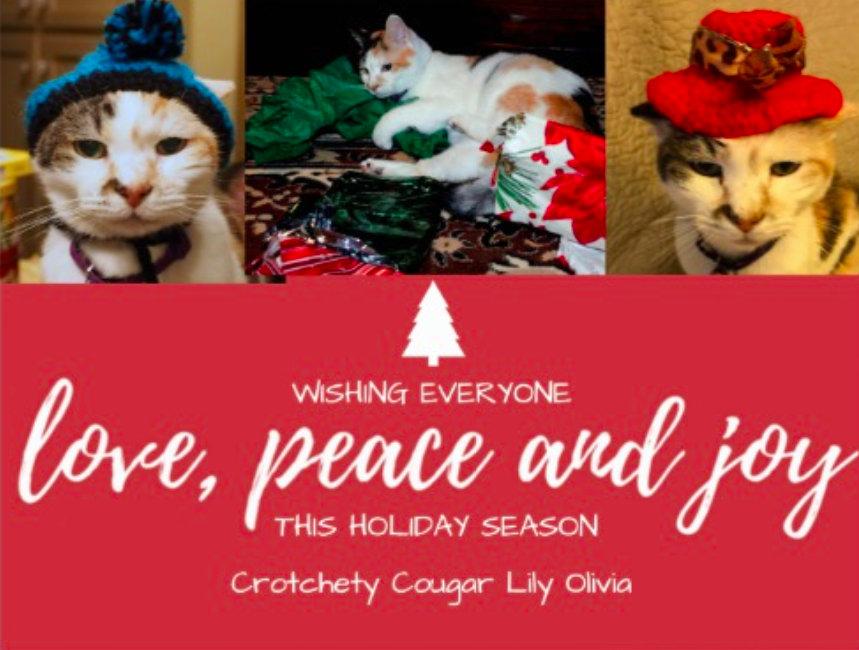 Lily Olivia's Crotchety Cougars Christmas card.