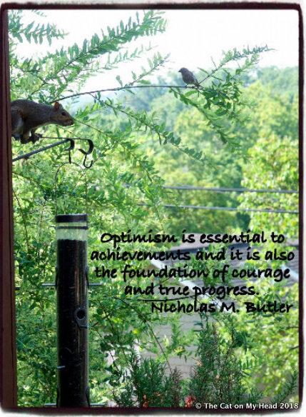 Sparks of Optimism