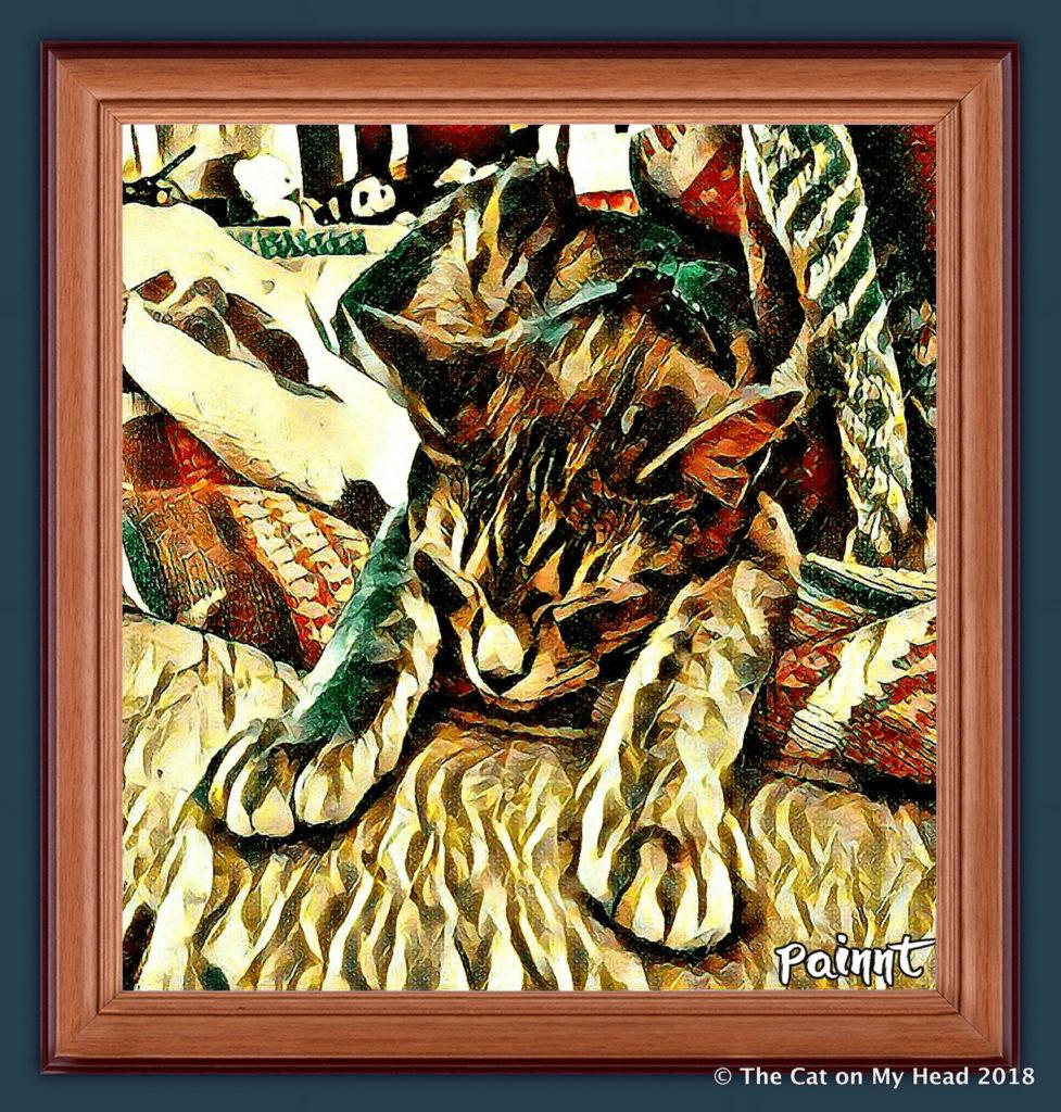 Sleeping kitten art with Sawyer.