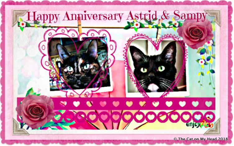 Anniversary Caturday Art