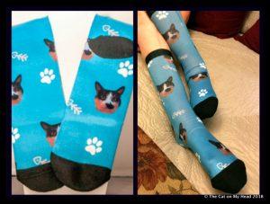 Customizable Cat Sock giveaway.
