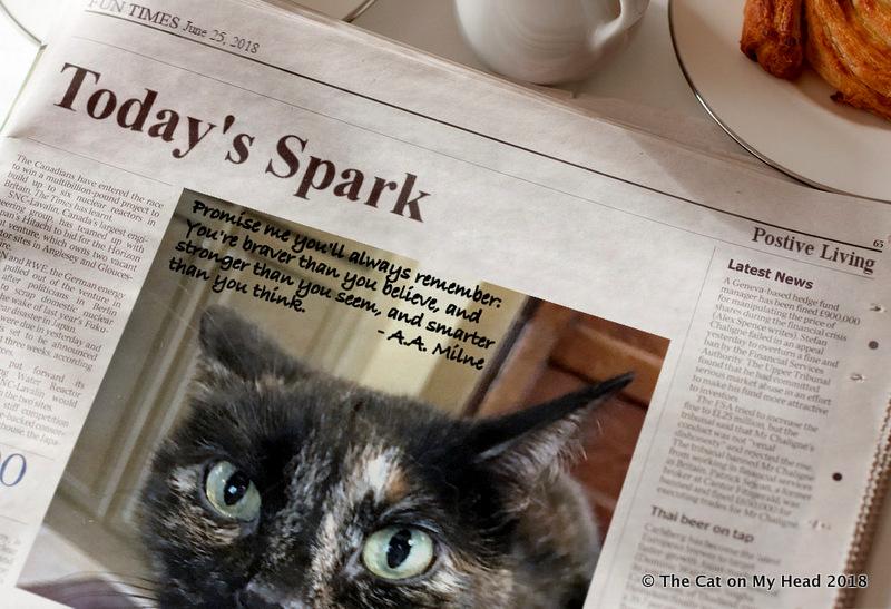 Astrid presents Sparks