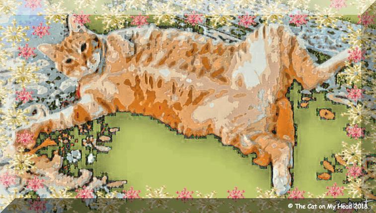 Cooper's belly Caturday Art