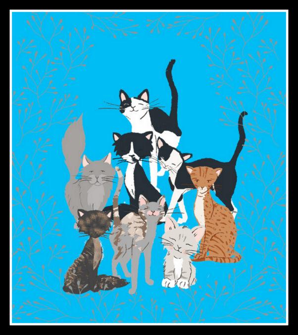 Kitties Blue portrait