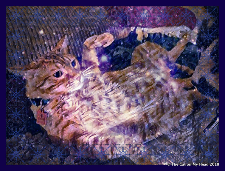 Caturday Art - Lost in Space