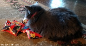 Giulietta claims all the Silver Meow gifts for herself without even knowing the contents.
