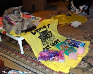 """All the goodies from Silver Meow: An appropriate """"Crazy Cat Lady"""" t-shirt for Mom, a whole slew of cat toys, catnip, treats and puff balls."""