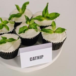 grumpy-cat-catnip blogoversary