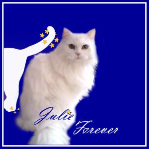 Julie-Forever