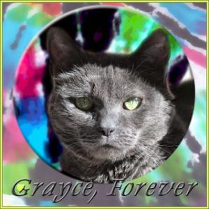 Grayce, Forever