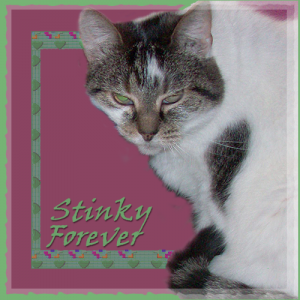 Stinky-FOREVER