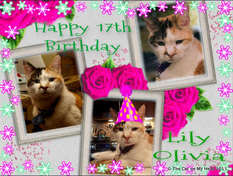 Lily Olivia' celebrates her 17th Birthday