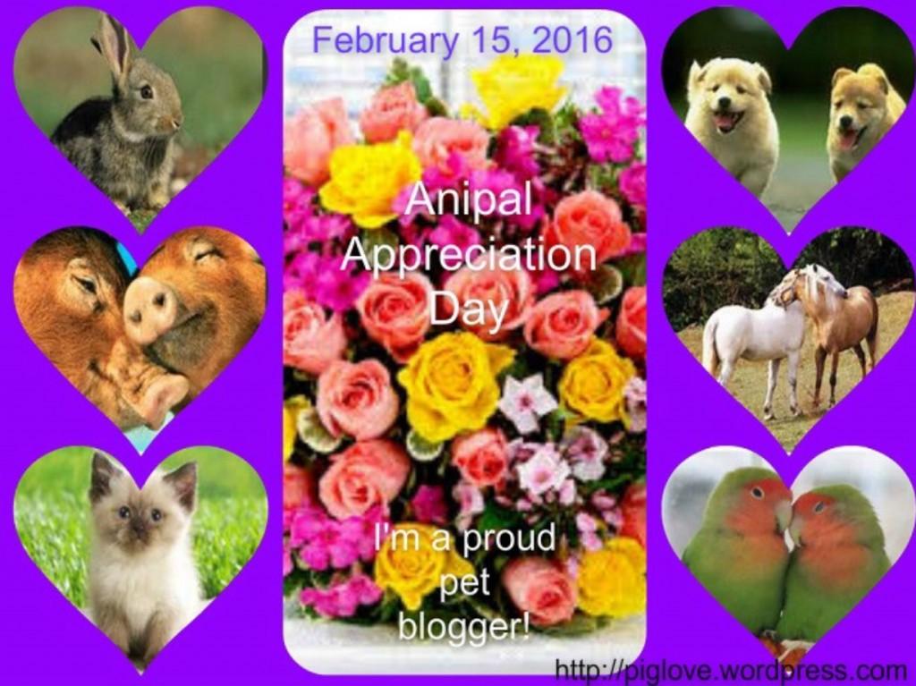 anipal appreciation day
