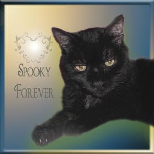 Spooky-FOREVER