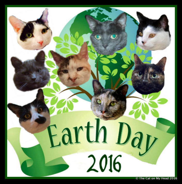 Earth Day 2016 Kitties Blue badge