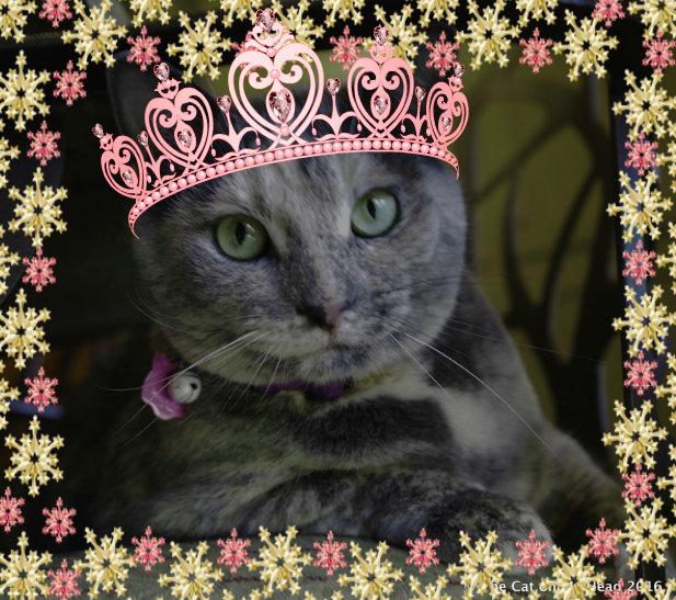 Princess Calista Josette on her 4th Birthday.
