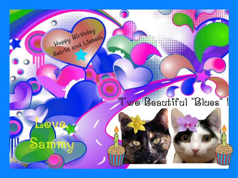 A birthday card from Sammy.