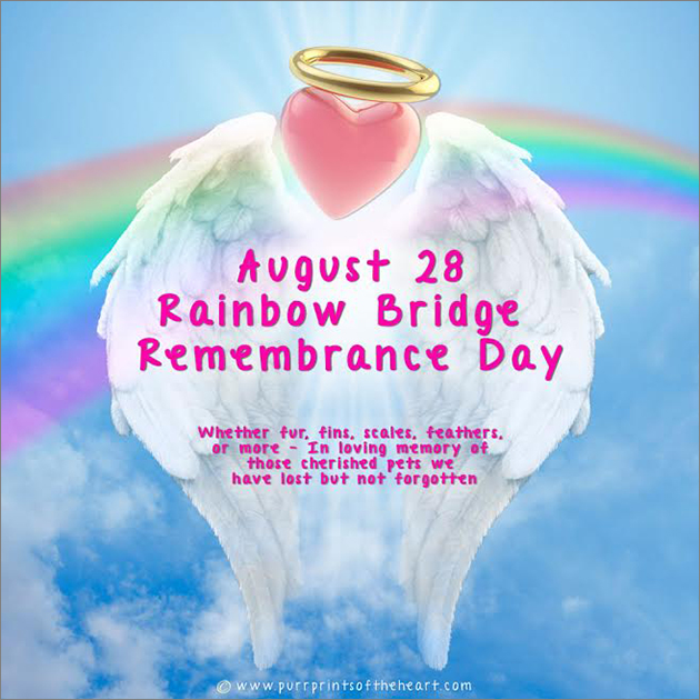 Remembrance Day 8.28.2016 Angels