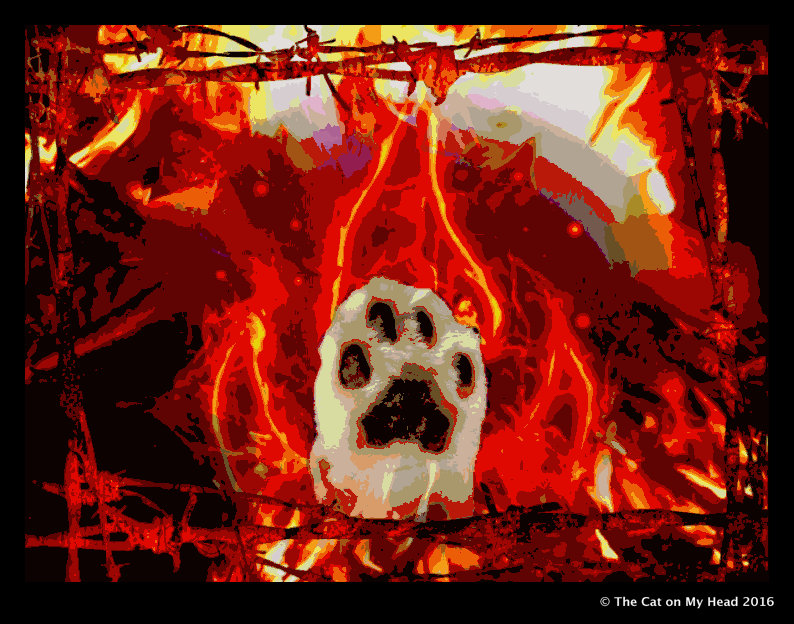 Mauricio's paw is set on fire for Caturday Art.