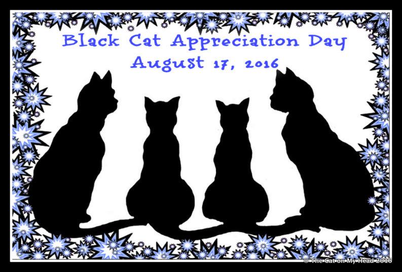 Birthday and Black cat Appreciation Day