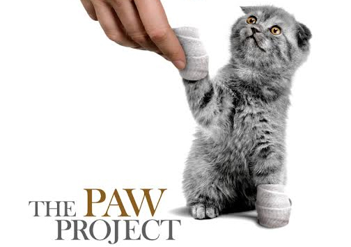 N.J. Bill to criminalize declawing.