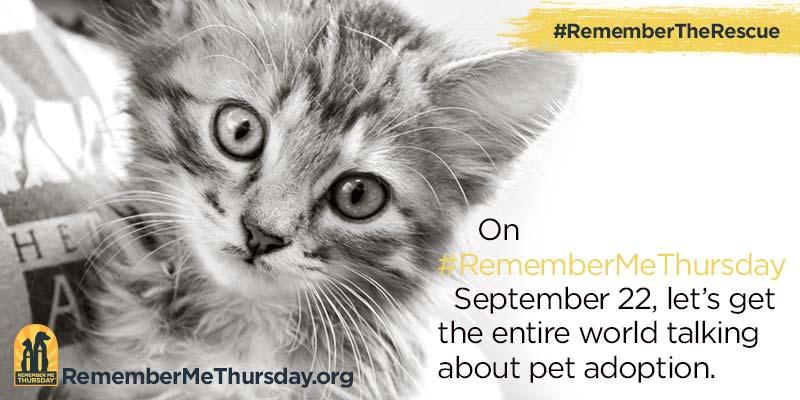 Remember Me Thursday®