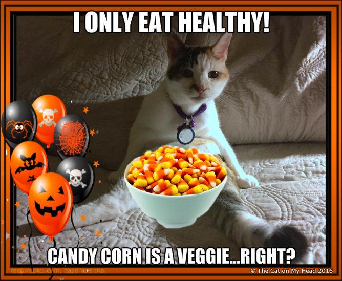 candy corn meme