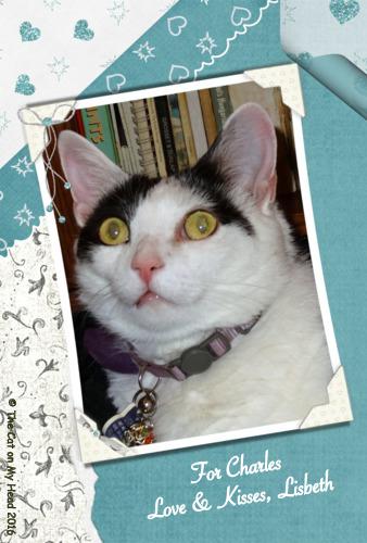 Lisbeth's wrapped in love selfie.