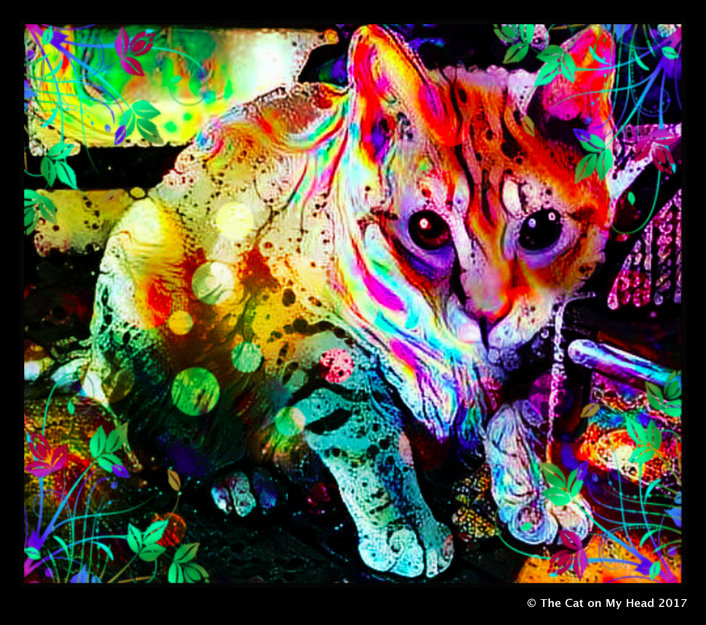 Cooper Murphy - Caturday Art
