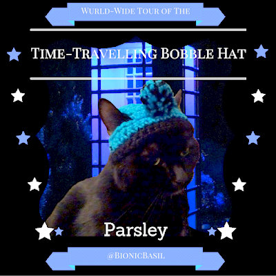 Wurld-Wide Tour of The Time-Travelling Bobble Hat @BionicBasil