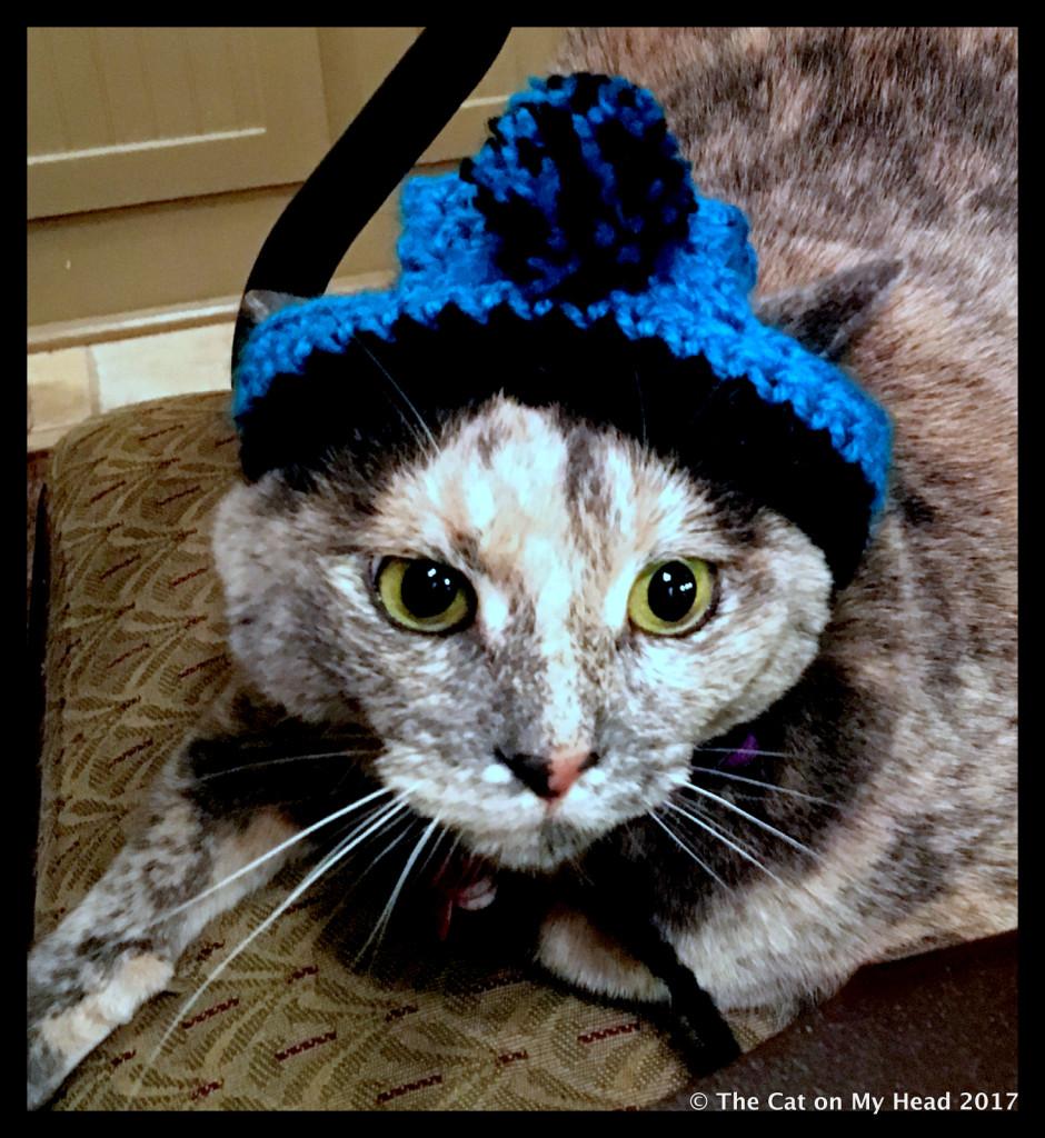 c.j. bobble hat
