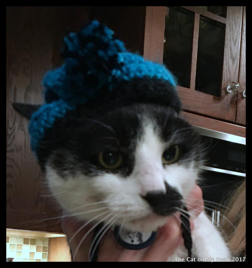 mau bobble hat