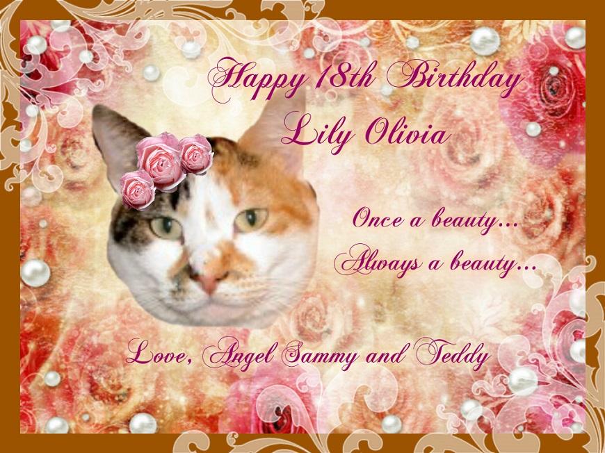 Lily Olivia's 18th birthday