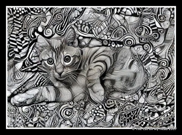 Caturday Art - Cooper Murphy Intricacy